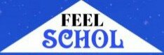 Welcome to feelschol